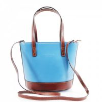 Bucket Style Leather Bag Handbag Blue Tan